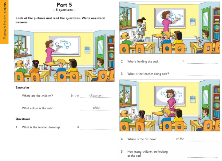 Cambridge Pre A1 Starters Exam Answer the Questions Sample